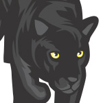Dribbble: Panther Payments